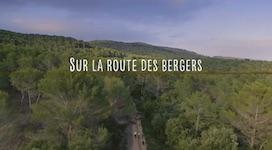 sur_la_route_des_bergers_vignette